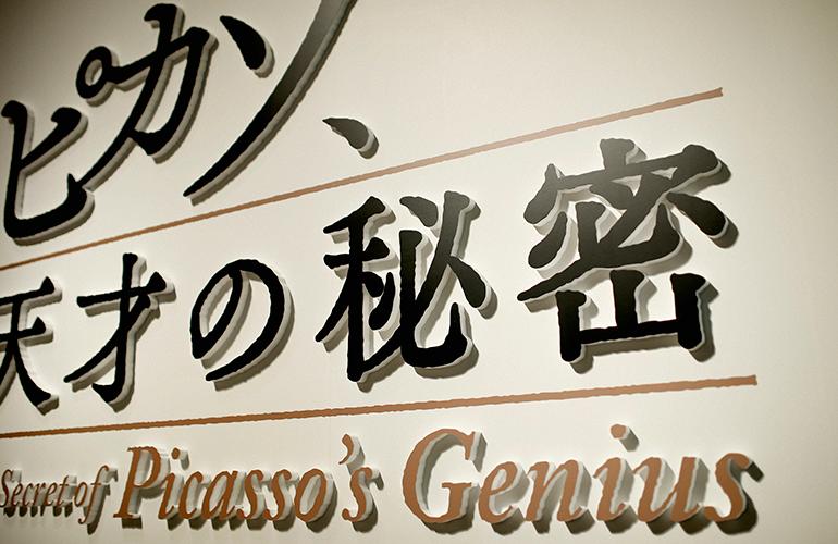pikaso_logo