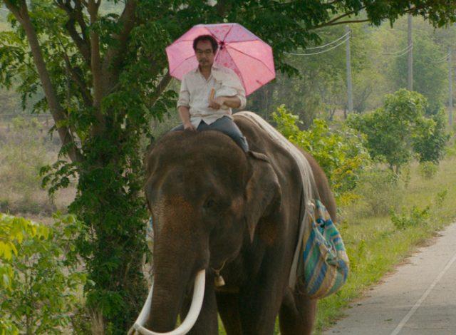 """『ポップ・アイ』: タイに魅了され、""""野良ゾウ""""にインスピレーションを得たカーステン・タンが描く、かつてない摩訶不思議なロードムービー!"""
