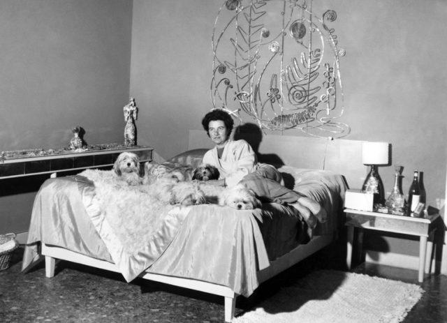『ペギー・グッゲンハイム アートに恋した大富豪』: 20世紀のコンテンポラリーな同時代アートの一大コレクションを成し遂げた女性の生涯を追ったドキュメンタリー。