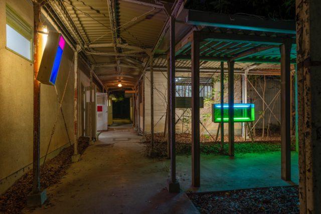 【REVIEW】豊田市の廃校を展示空間とした、現代美術作家・中崎透キュレーションの企画展「としのこえ、とちのうた。」をキュレーター・天野一夫がレビュー。